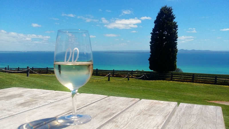 Photo of a Jack Rabbit wine glass next to a tree with views of the bay a beautiful Bellarine winery.