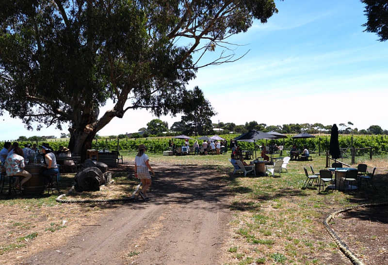 Bennetts On Bellarine Winery