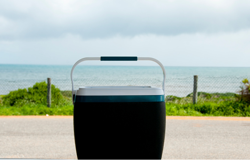 Picture of the best esky with the ocean in the background.