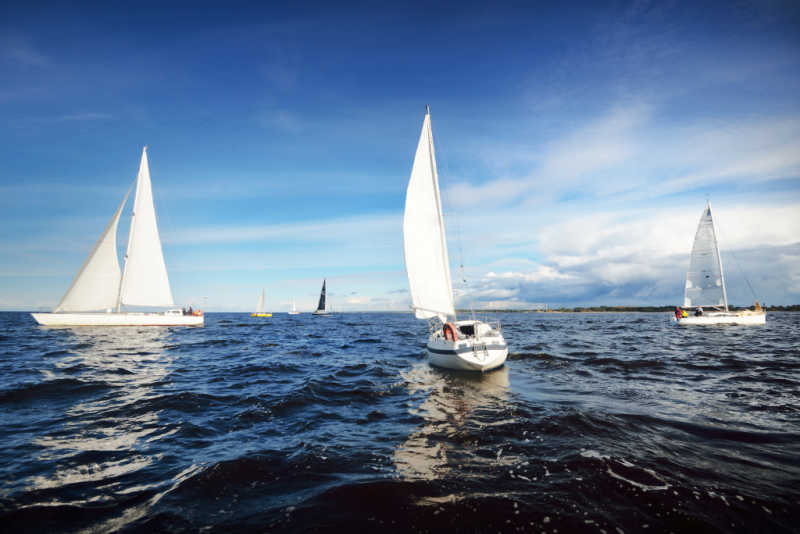 Racing sail boats at the Festival of Sails