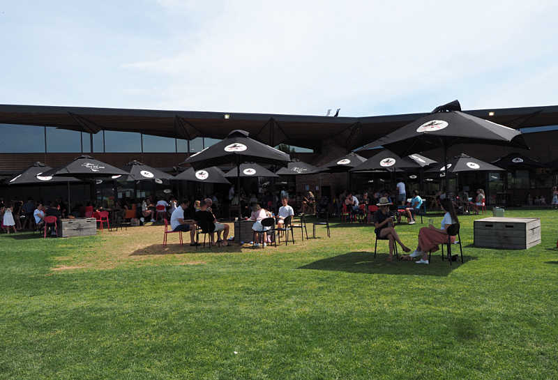 People enjoying cider under umbrellas on the lawns at the Flying Brick Cider House.