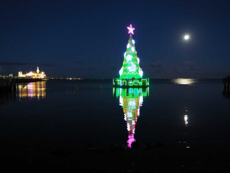 The floating Geelong Christmas tree with Cunningham Pier in the background.
