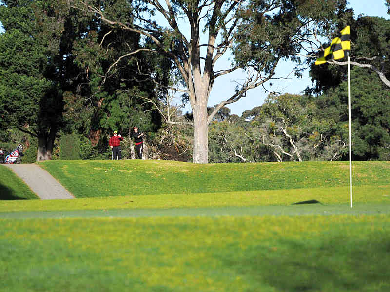 Golfers and flag at Geelong golf courses.