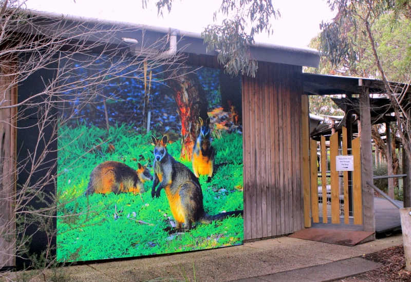 Wall mural at entrance to Narana Geelong