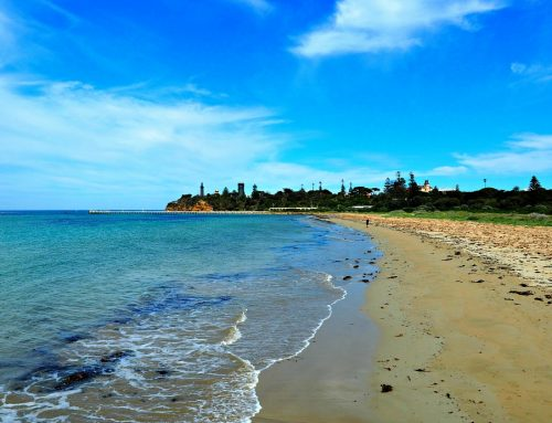 10 Fantastic Things To Do In Queenscliff Victoria