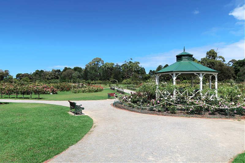 Pathways, rotunda, and park bench at the Werribee Rose Garden.