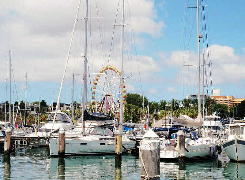Harbour at Royal Geelong Yacht Club.